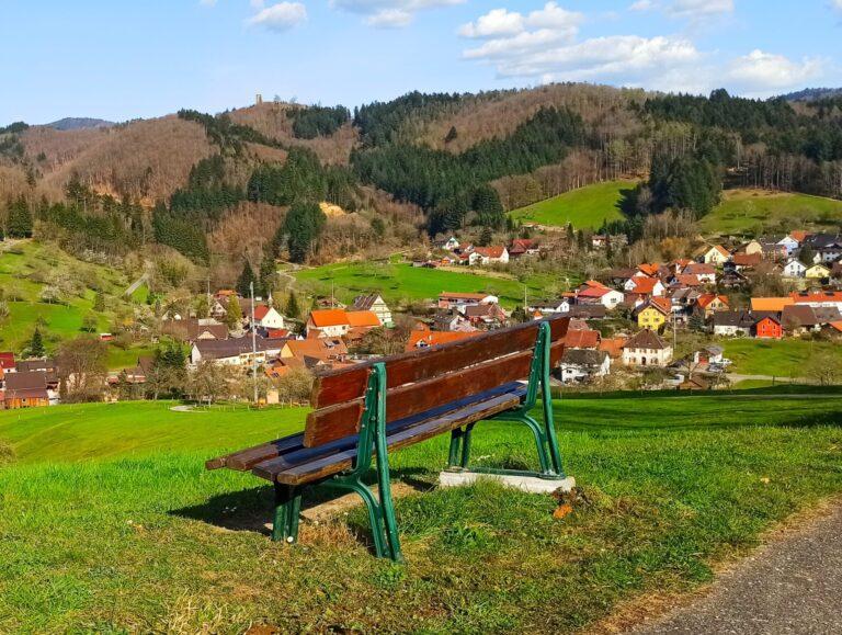 Sitzbank am Enzenberg repariert